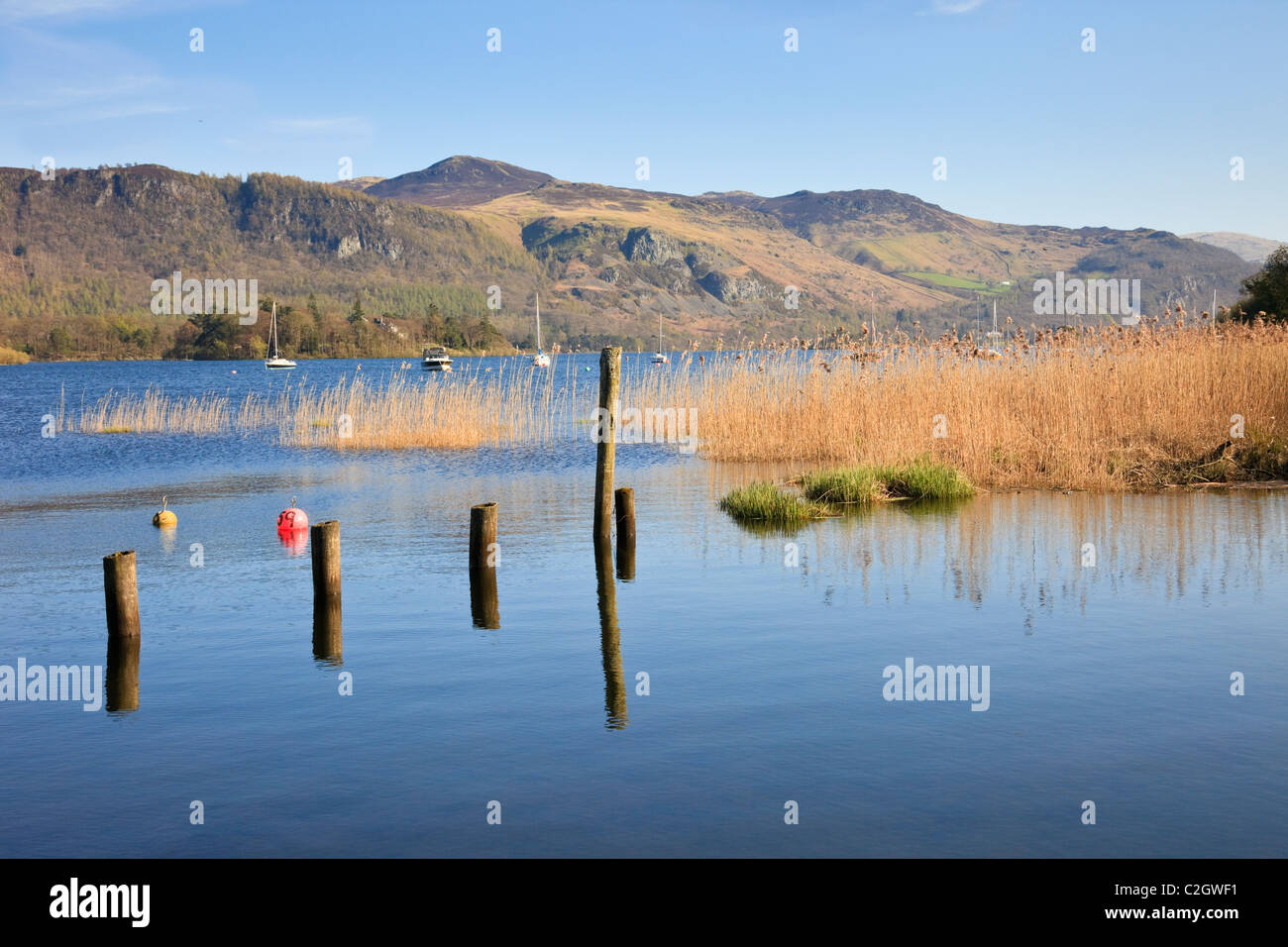 View east across Derwentwater lake in Borrowdale in the English Lake District National Park in summer. Portinscale - Stock Image