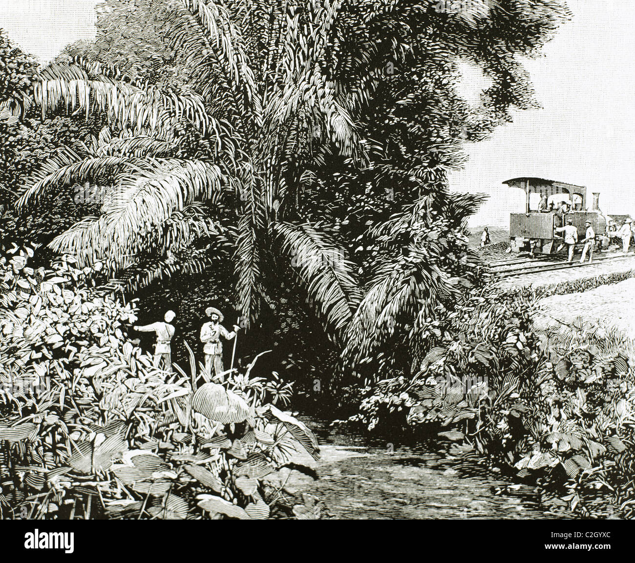 Africa. Congo. Construction of the railway in the territory colonized by Belgium. Engraving in 1892. - Stock Image