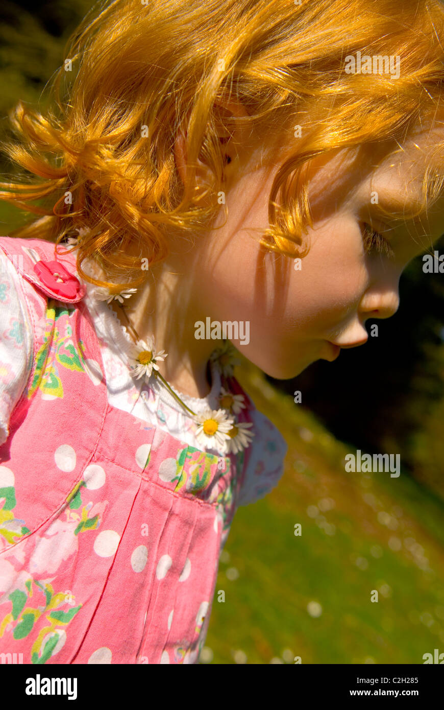 Young red headed girl in a pink dress wearing a daisy chain - Stock Image