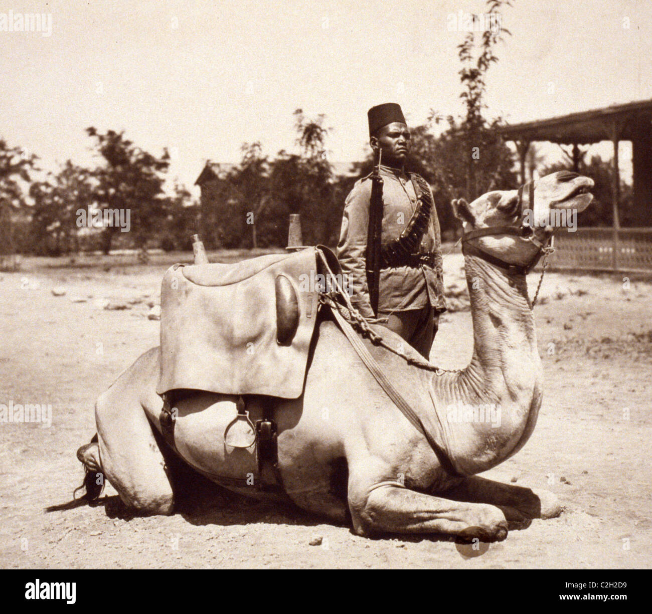 Anglo-Egyptian Sudan - camel soldier of the native forces of the British army - Stock Image