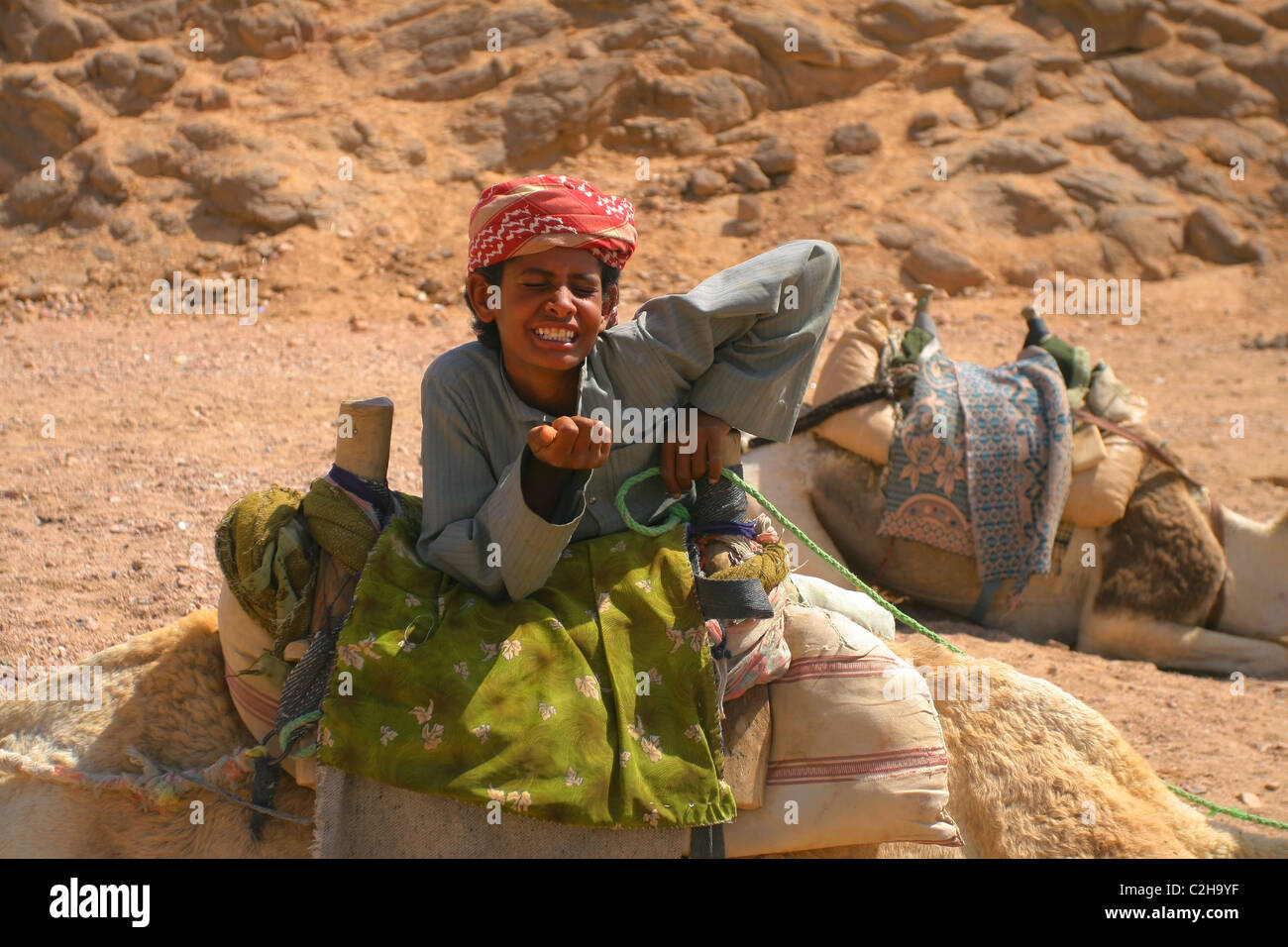 Bedouin boy cameleer laughs with her ​​eyes closed. Desert, Egypt. - Stock Image