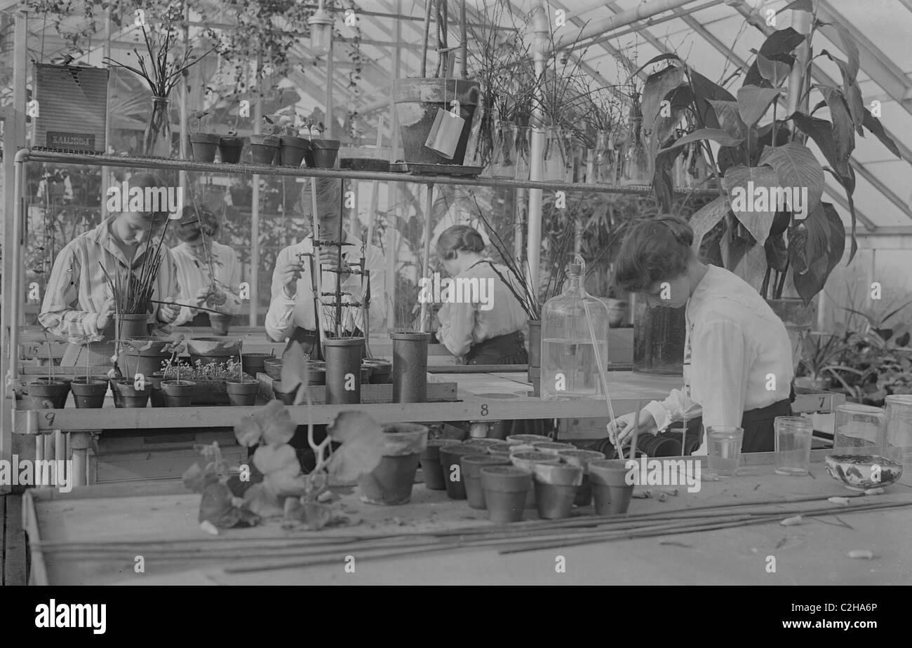 Botany class -- Barnard - Stock Image
