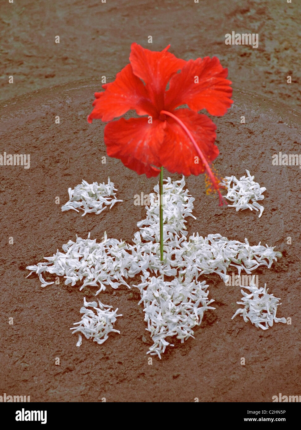Flower Rangoli High Resolution Stock Photography And Images Alamy