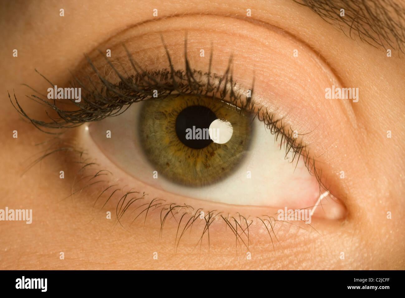 Woman's Eye - Stock Image
