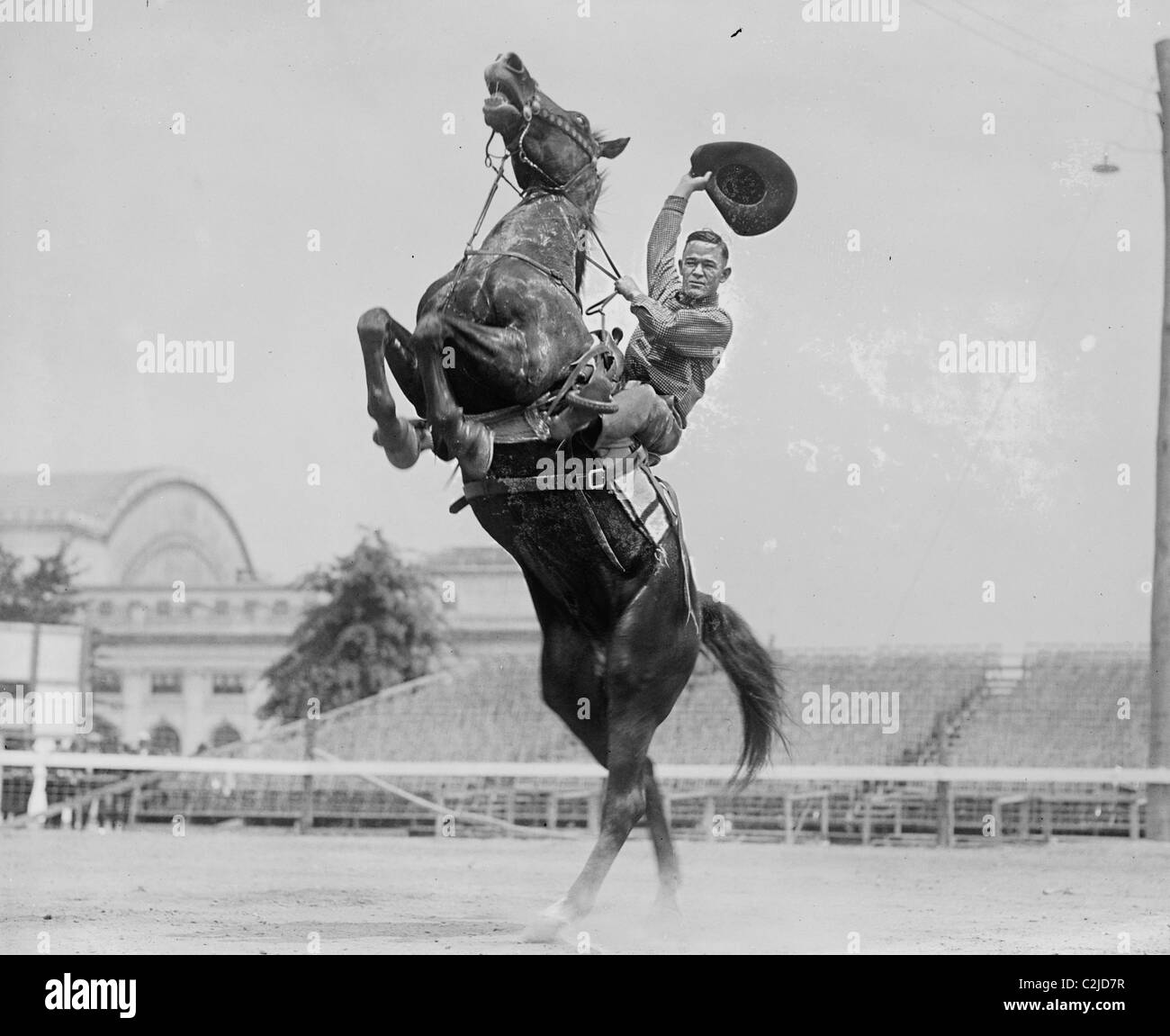 Cowboy Rides Rearing Horse Waves His Hat Stock Photo 36055595 Alamy