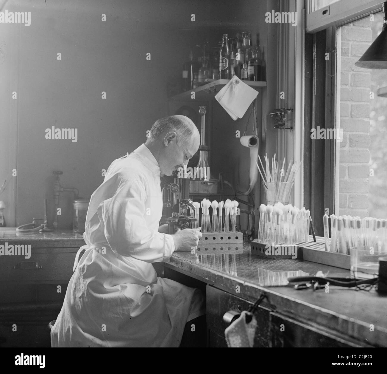 Dr. Edward Francis, bacteriologist in his laboratory - Stock Image