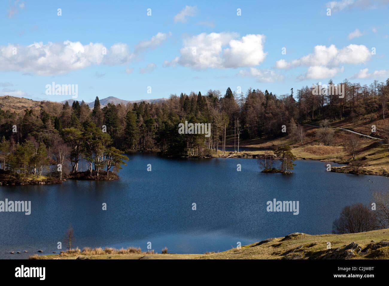 Tarn Hows, Lake District National Park, Cumbria, England, UK. - Stock Image