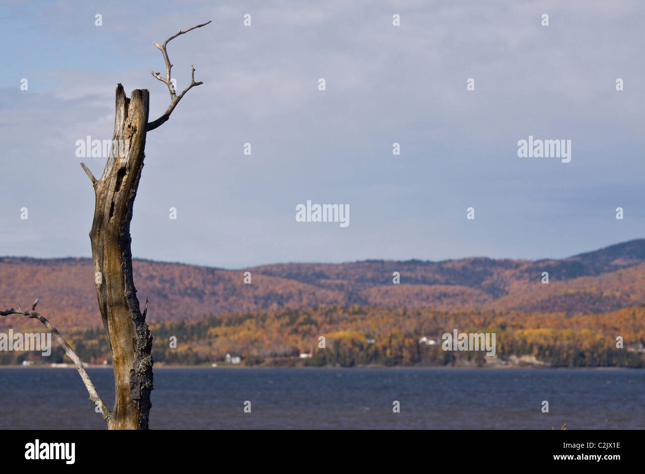 Gaspe Peninsula rural scenes in autumn, Quebec, as seen from north shore of New Brunswick, Canada. - Stock Image