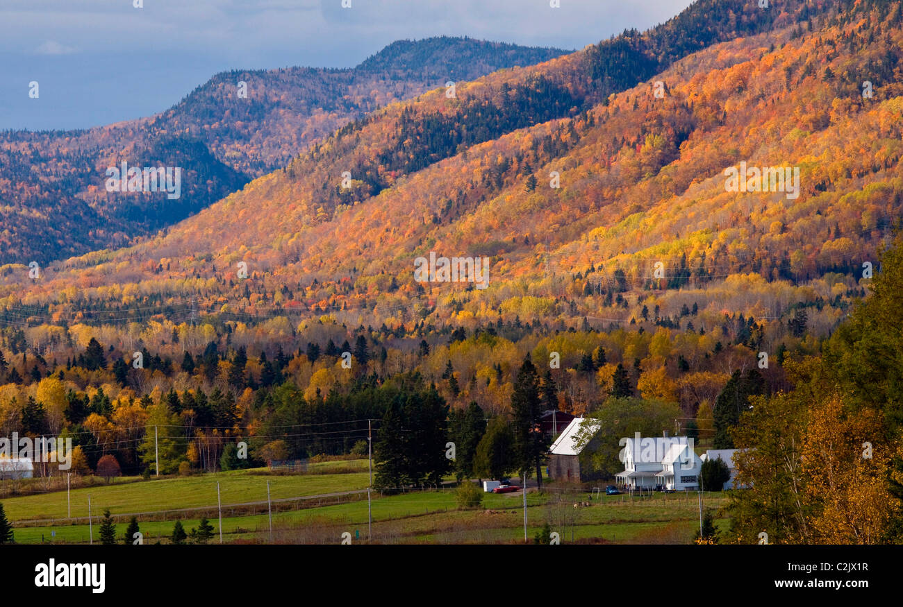 Spectacular fall colors in rural Gaspe Peninsula Quebec, Canada. - Stock Image