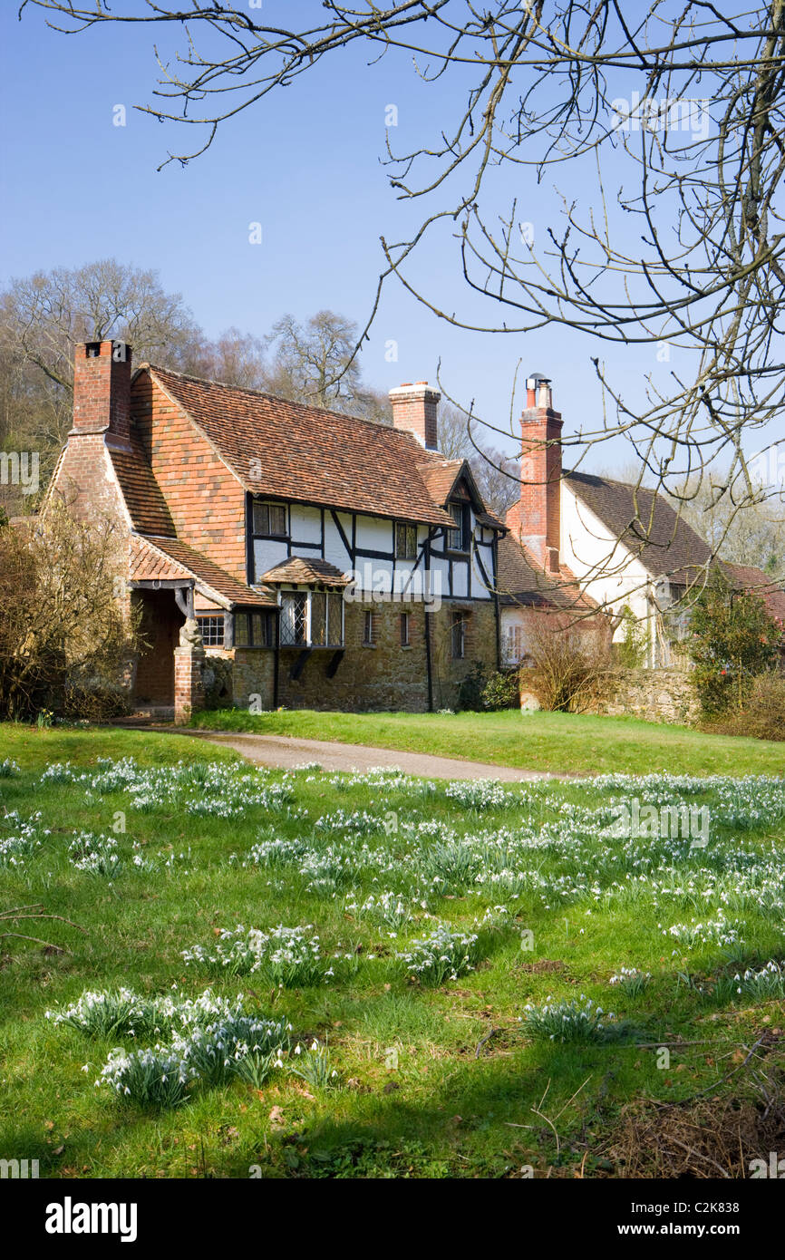 Cottage near Dorking, Surrey, UK with snowdrops - Stock Image