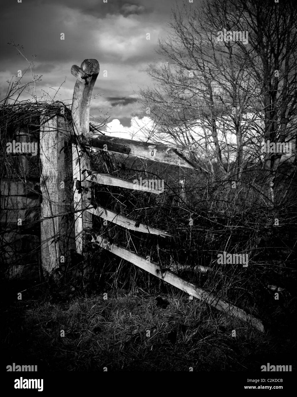 Monochrome image of a broken gate. Stock Photo