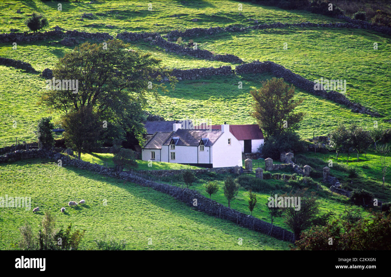 Rural farm and green fields at the base of the Mourne Mountains, County Down, Northern Ireland. - Stock Image