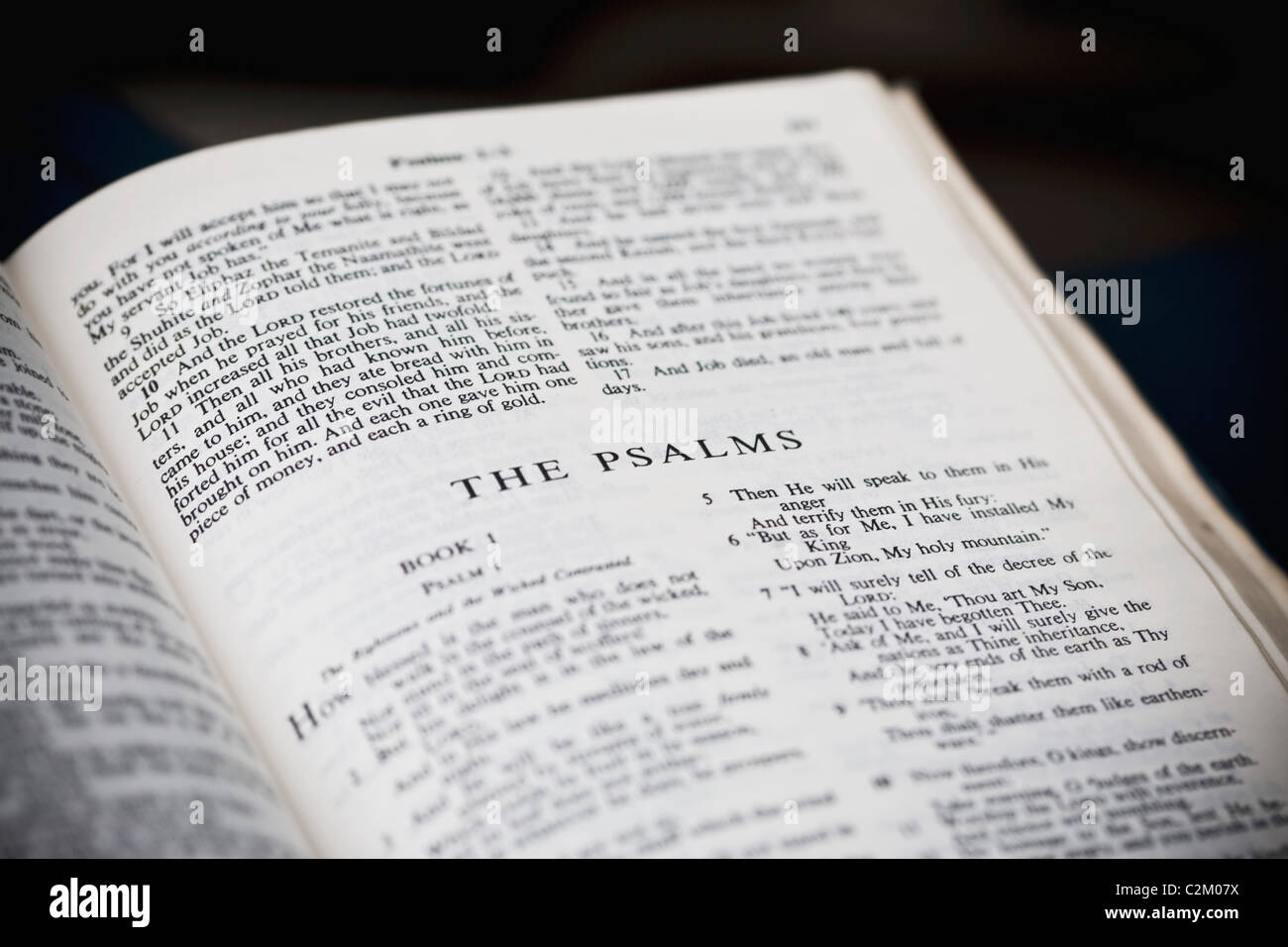 The New American Standard Bible Open To The Psalms Stock Photo