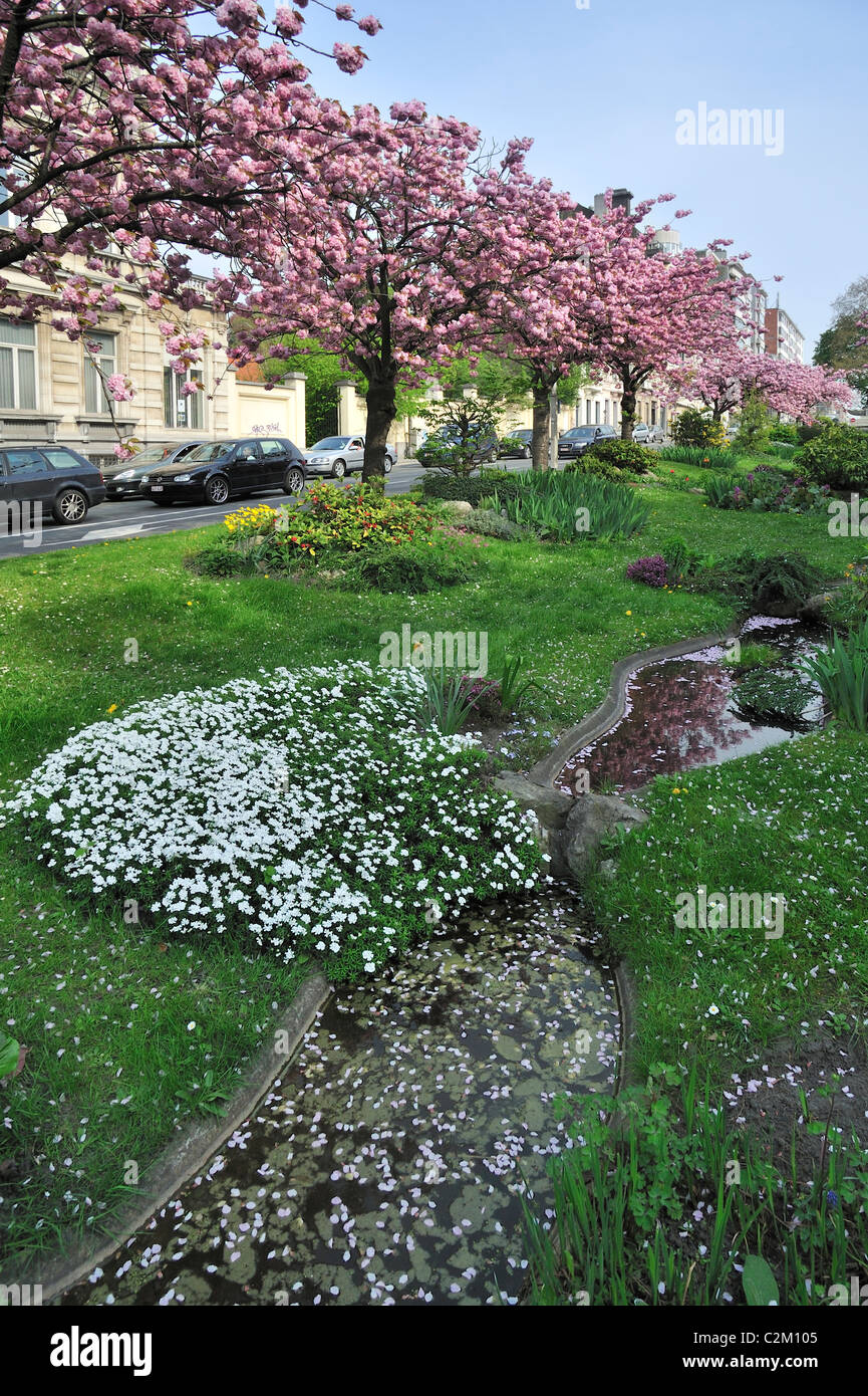 Wide median strip / central reservation which has been made into a garden feature of the town Ghent, Belgium - Stock Image