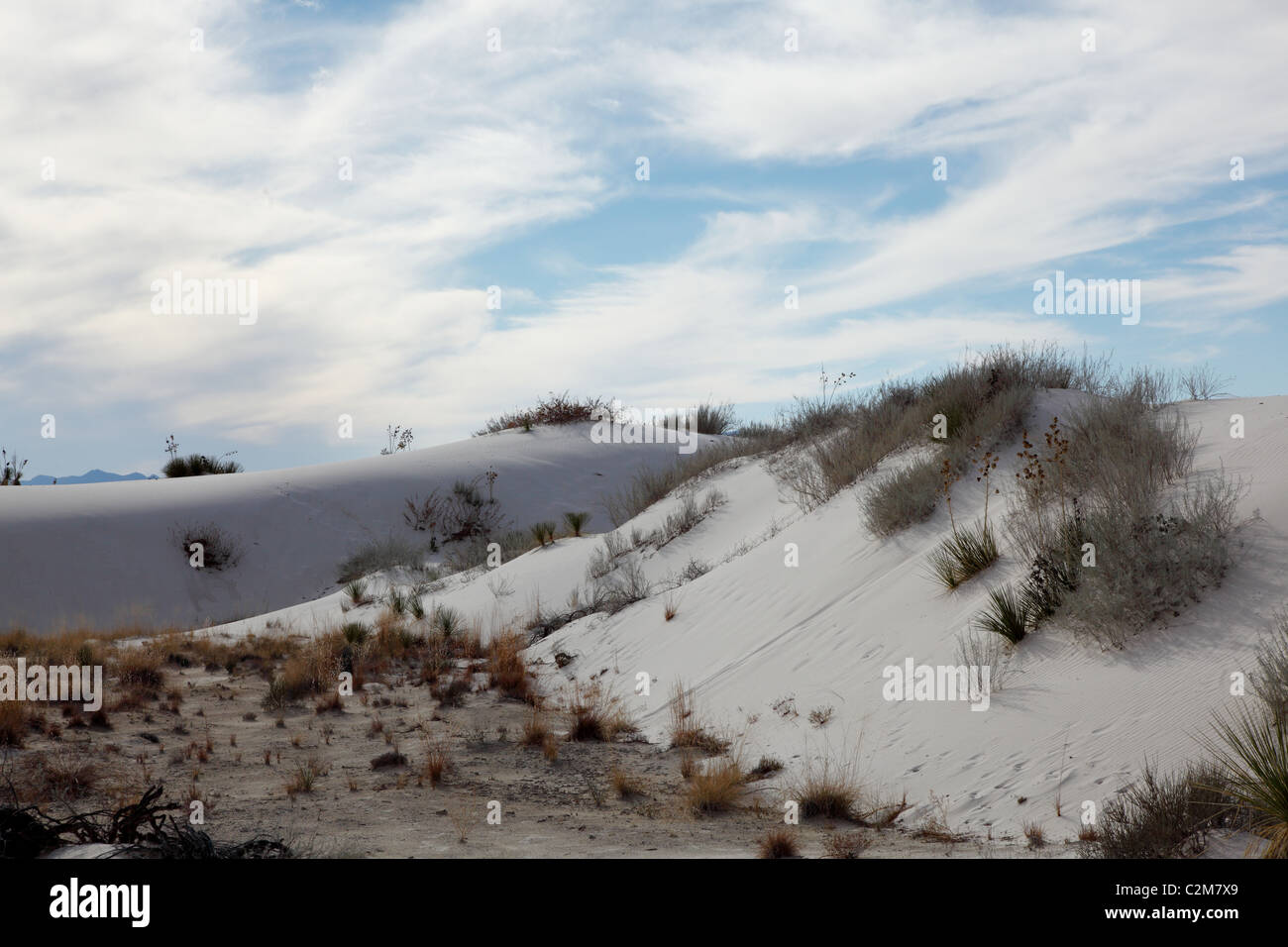 Sand dune at White Sands National Park in New Mexico, United States - Stock Image
