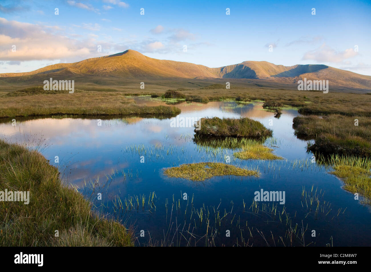 Bog pool beneath the Nephin Beg Mountains, Ballycroy National Park, County Mayo, Ireland. - Stock Image