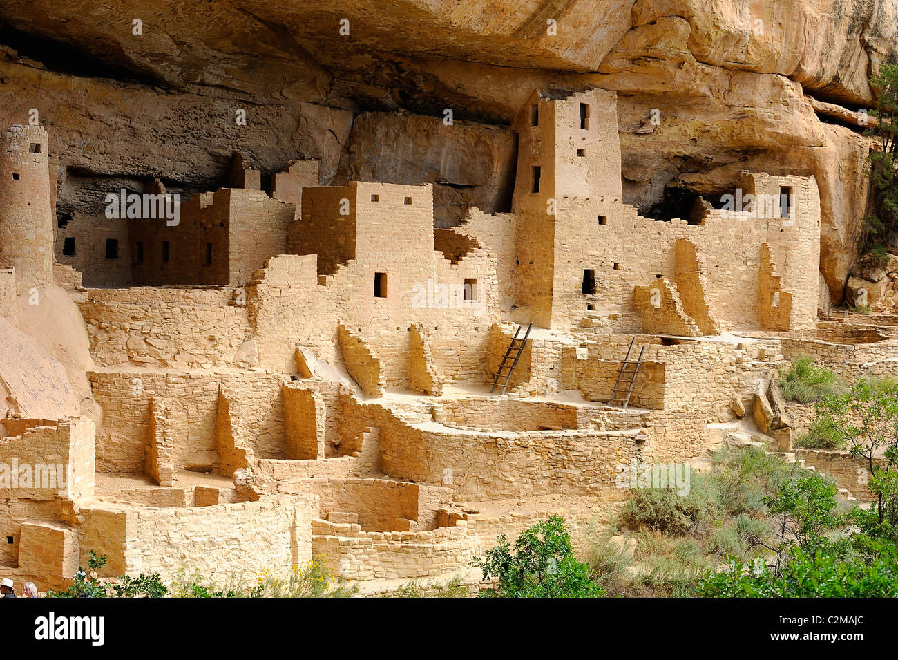Cliff Palace, cliff dwelling in Mesa Verde National Park Stock Photo