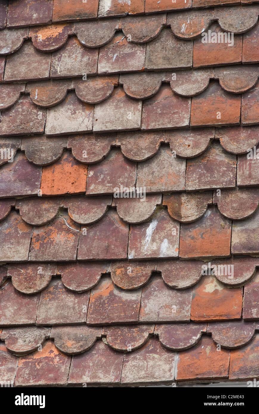 Tile detail, Rye, Kent, England - Stock Image