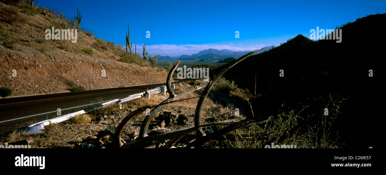 Rio el Novillo, Mexican Federal Highway No. 1 follows the length of the Baja California Peninsula from Cabo San Stock Photo