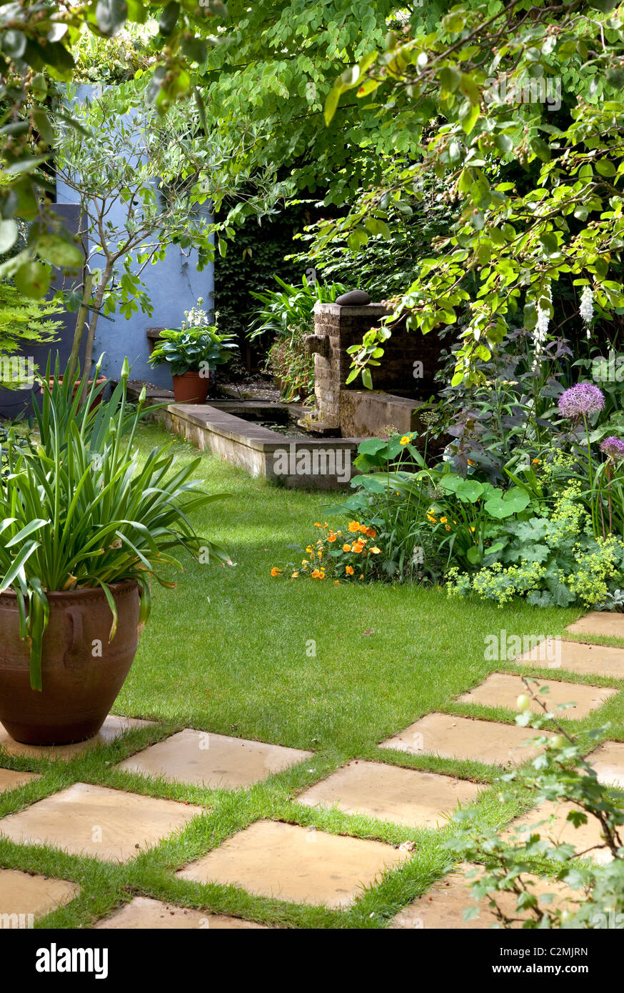 Suburban Garden. Agapanthus in large pot on checkerboard stone and grass paving - Stock Image