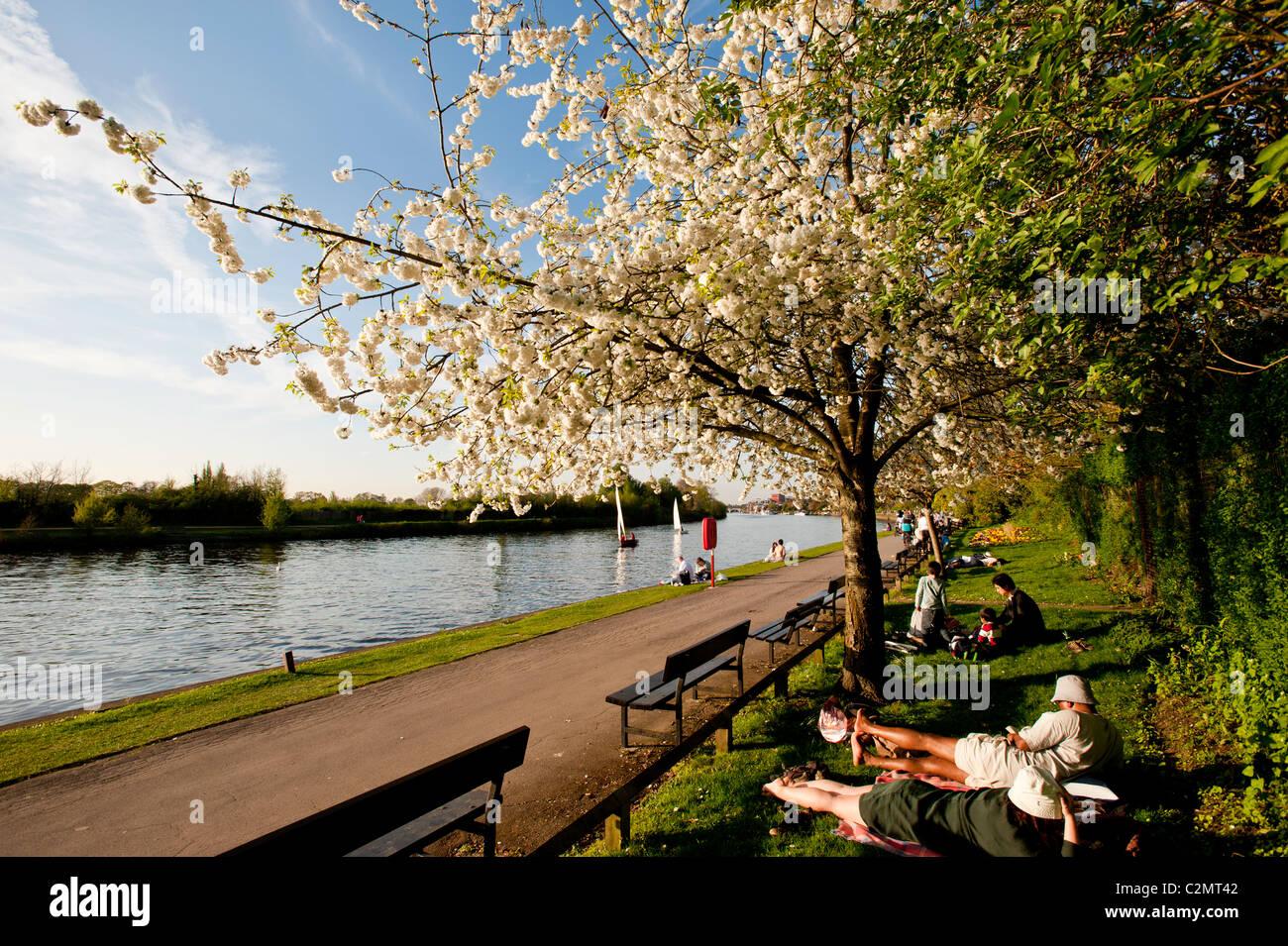 Royal Borough Of Kingston Upon Thames Stock Photos & Royal Borough ...