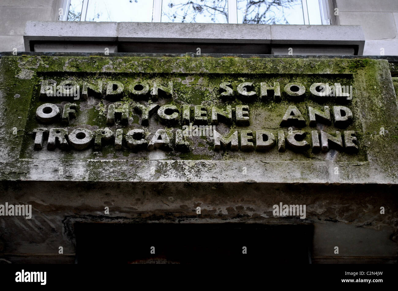 Moss covered Sign craved in stone for the London school of hygiene and tropical medicine. Stock Photo