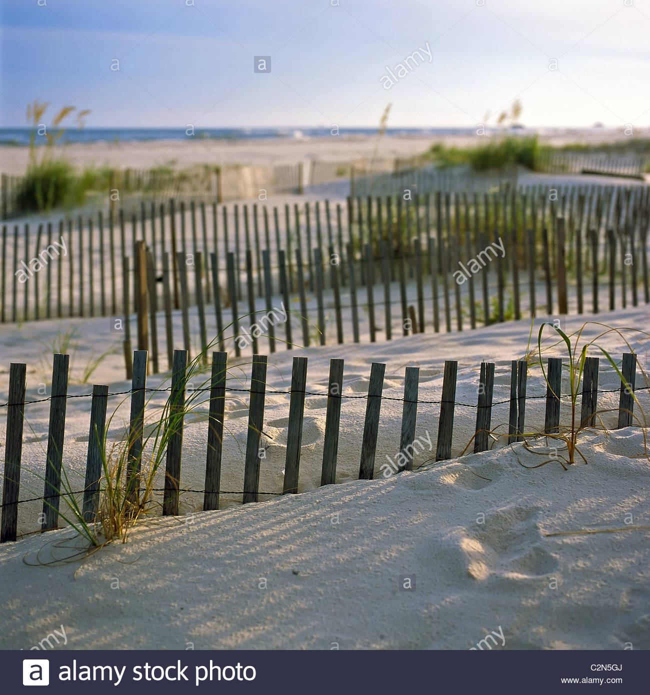 Sand dunes and beach grasses at sunset, Gulf Shores, Alabama. - Stock Image