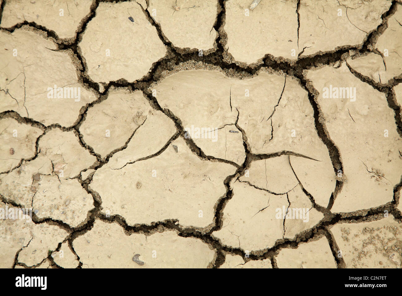 Drought, Central Otago, South Island, New Zealand - Stock Image