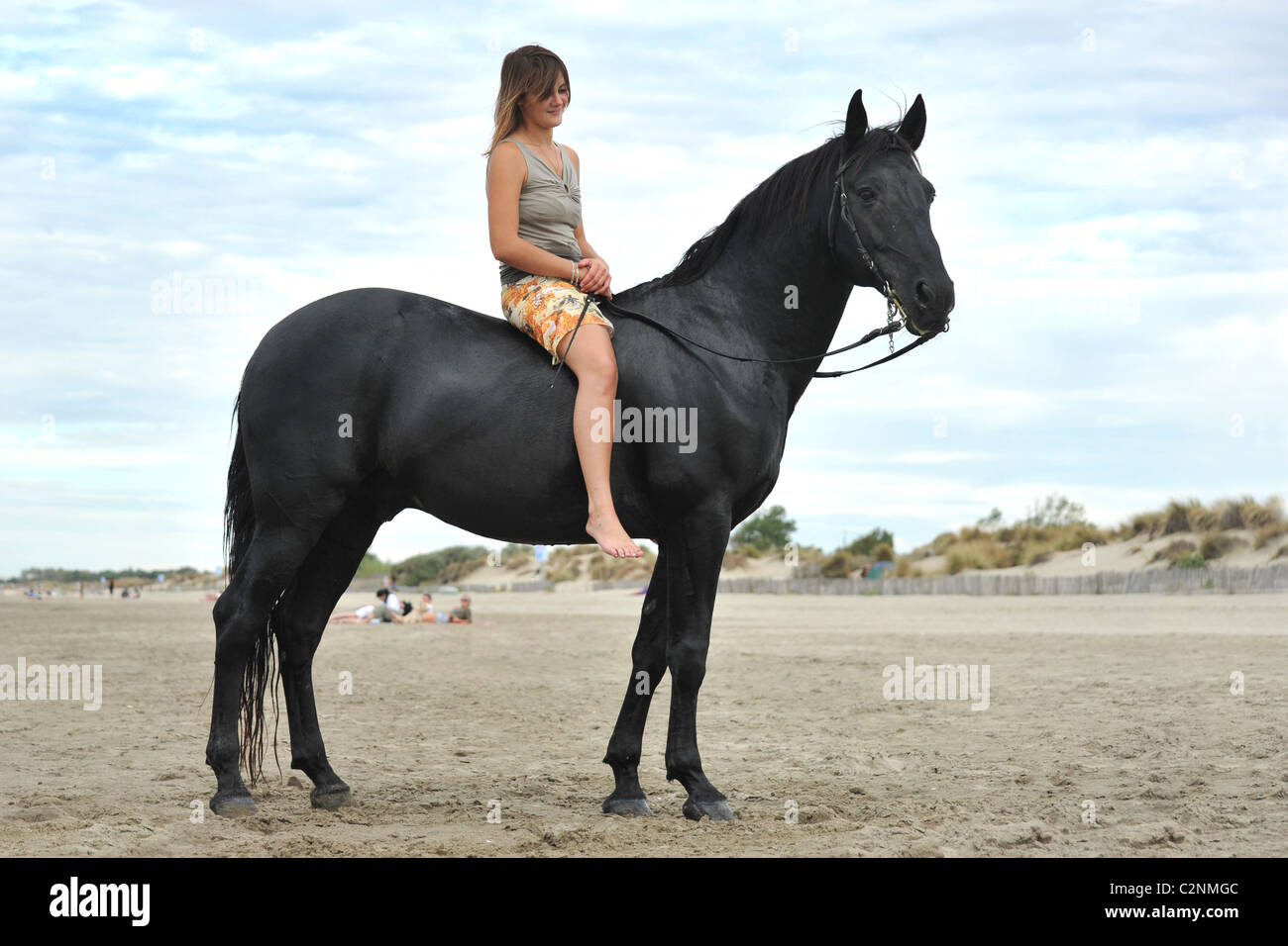 Beautiful Black Horse On The Beach And Beautiful Woman Stock Photo Alamy