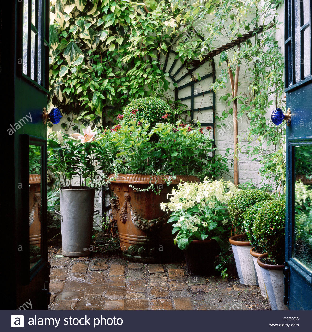 Small town garden view through backdoor french windows for Secluded backyard ideas