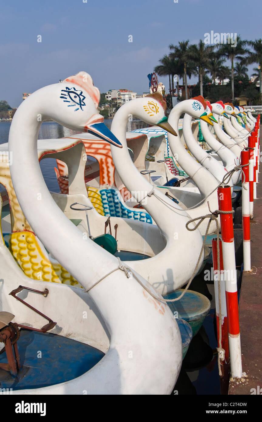 Vertical close up of weird plastic swan pedalos on Truc Bach Lake (Hồ Trúc Bạc) in central Hanoi on a sunny - Stock Image