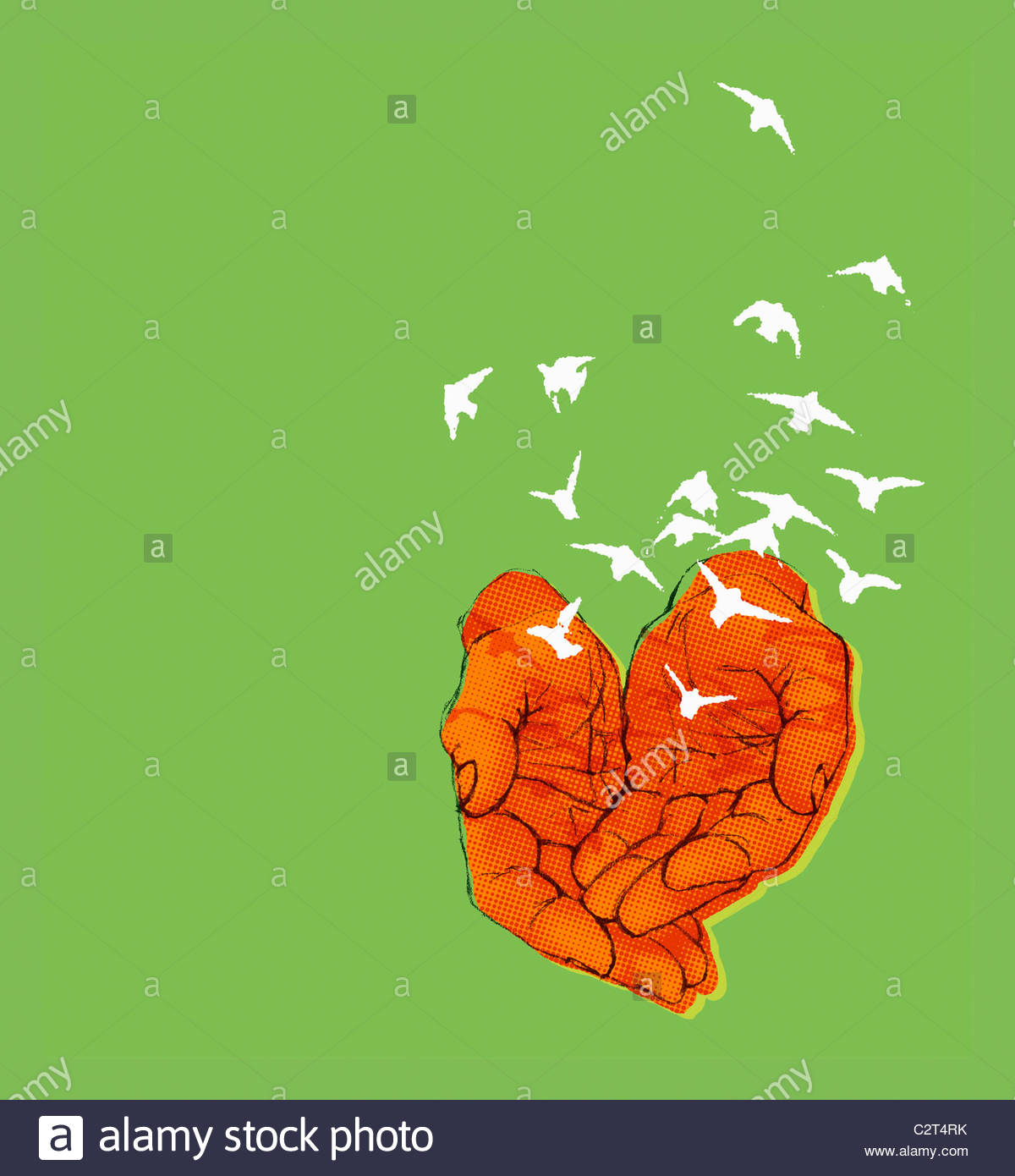Hands releasing flock of birds - Stock Image