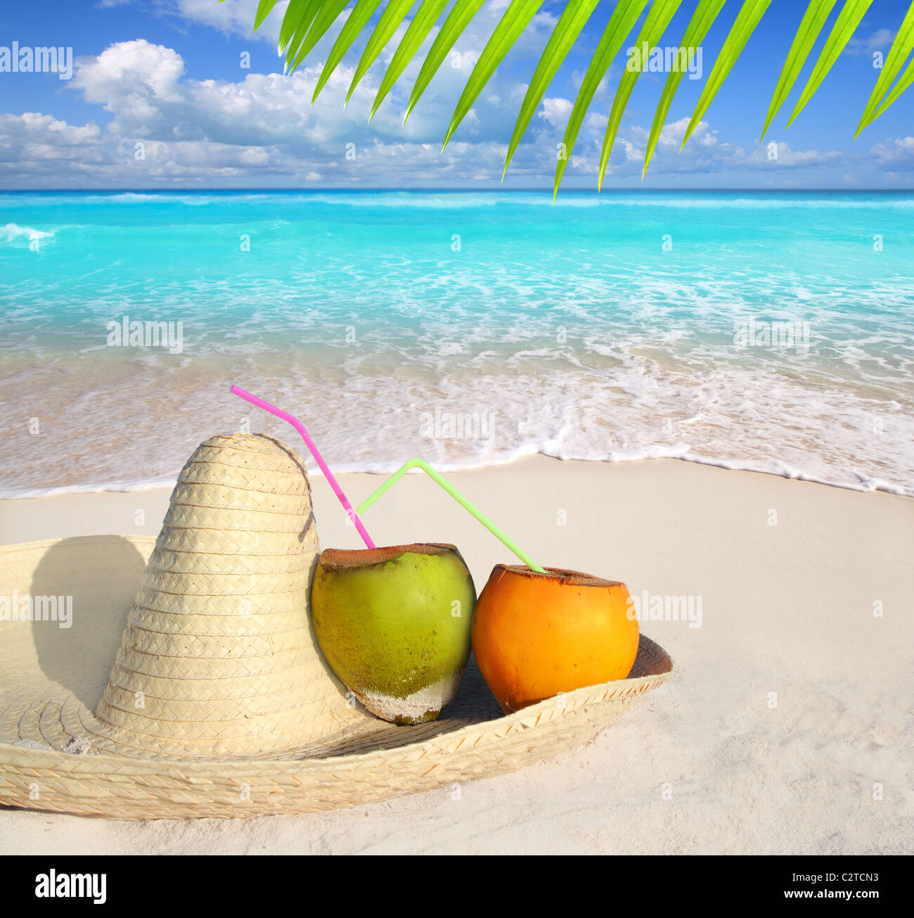 Coconuts in Caribbean beach on mexico sombrero hat tropical turquoise - Stock Image
