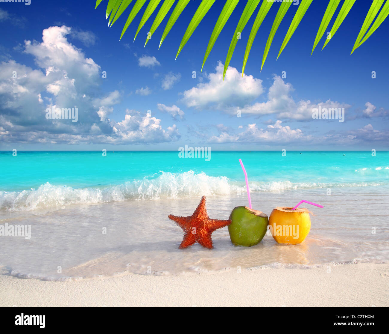 coconut cocktails juice and starfish in tropical aqua beach Caribbean - Stock Image