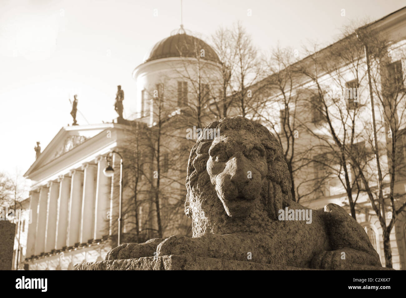 Institute of Russian Literature (the Pushkin House). St.Petersburg, Russia. - Stock Image