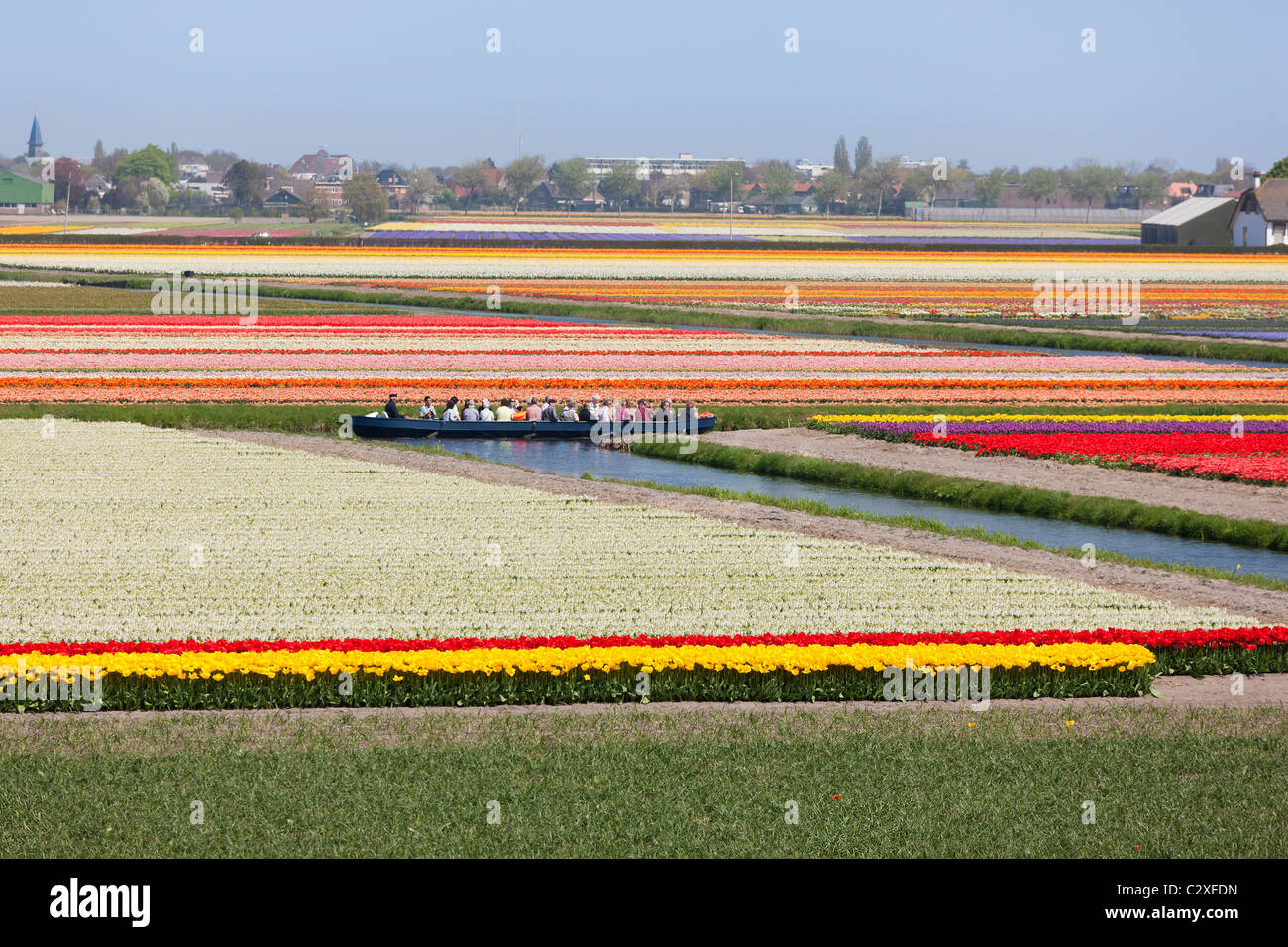 Visitors take a trip through the flowering tulip fields by electric powered boat at Keukenhof Flower Garden in Lisse, - Stock Image