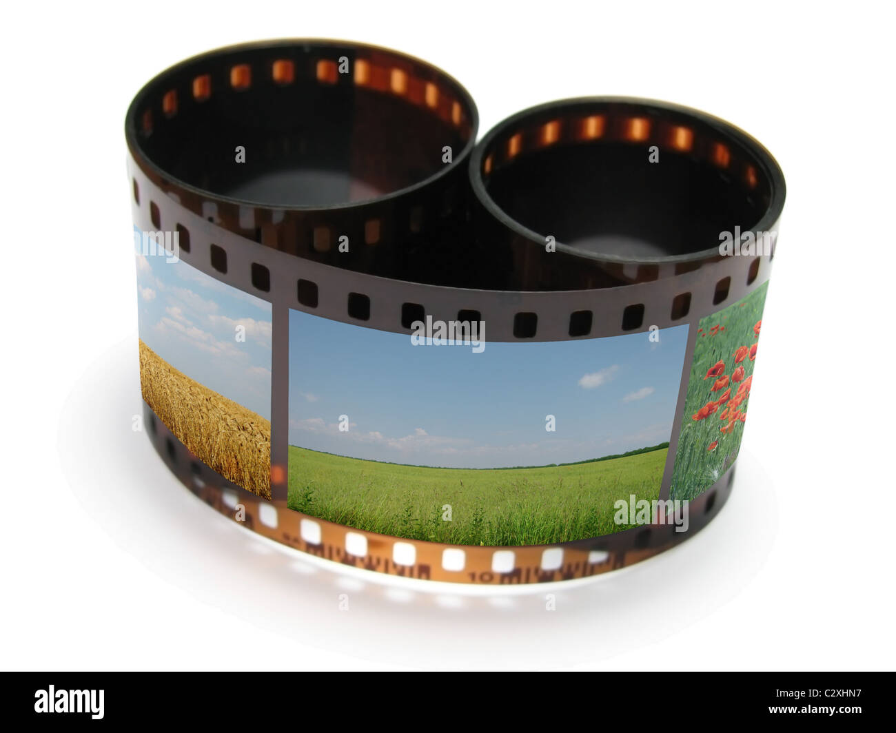 reel of photographic film with images of nature - Stock Image