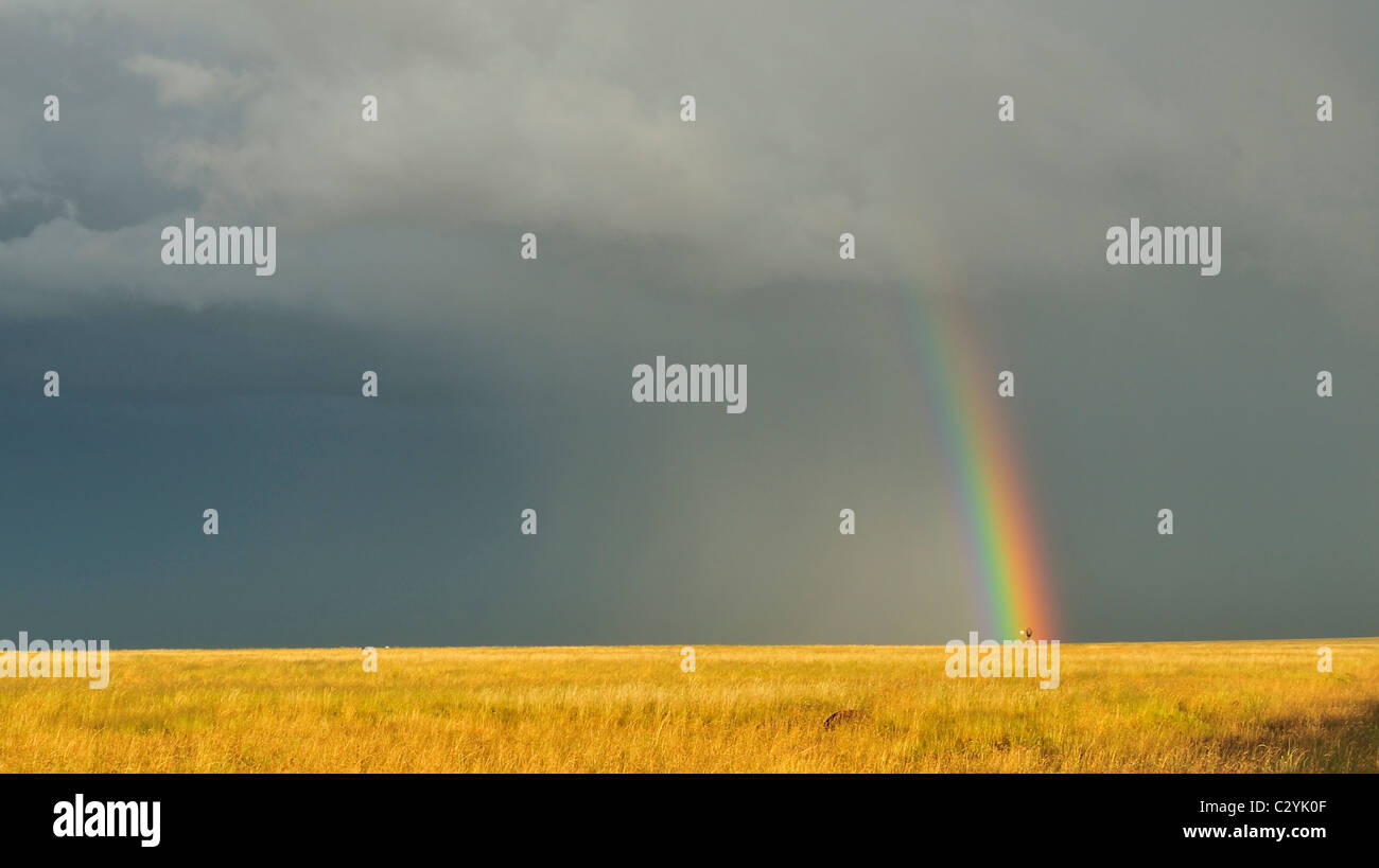Advancing storm and rainbow, Free State near to Lesotho, South Africa - Stock Image