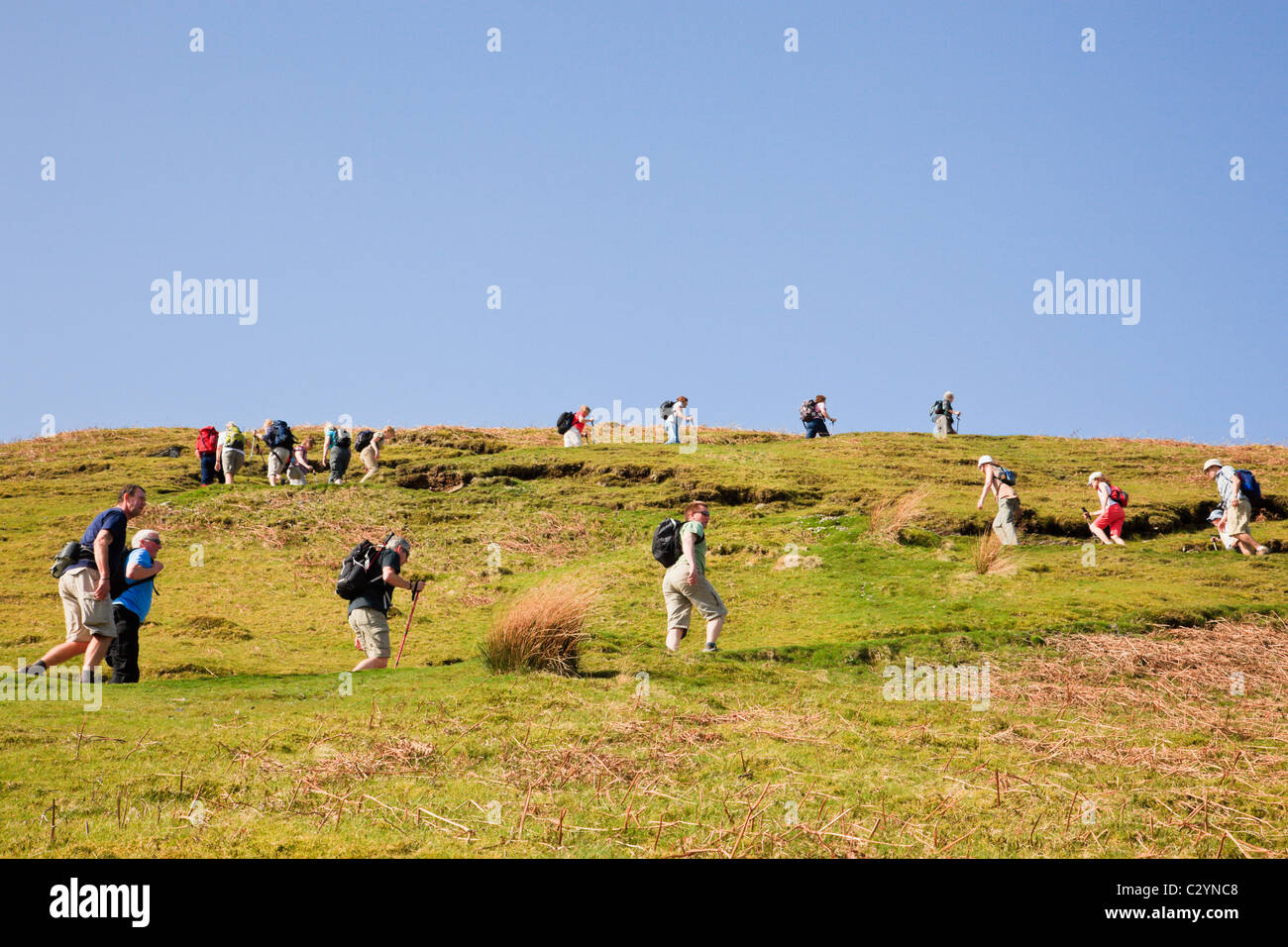Cumbira, England, UK. Zigzag line of people walking on footpath up Catbells in Lake District National Park on busy - Stock Image