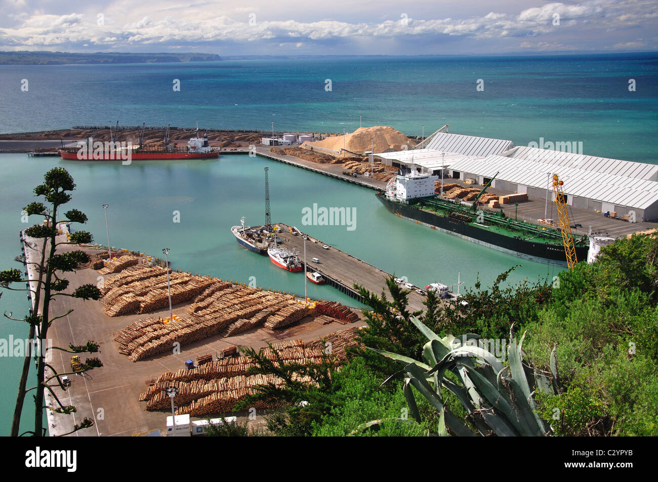 Logging ship in Napier Harbour, Napier, Hawke's Bay, North Island, New Zealand - Stock Image