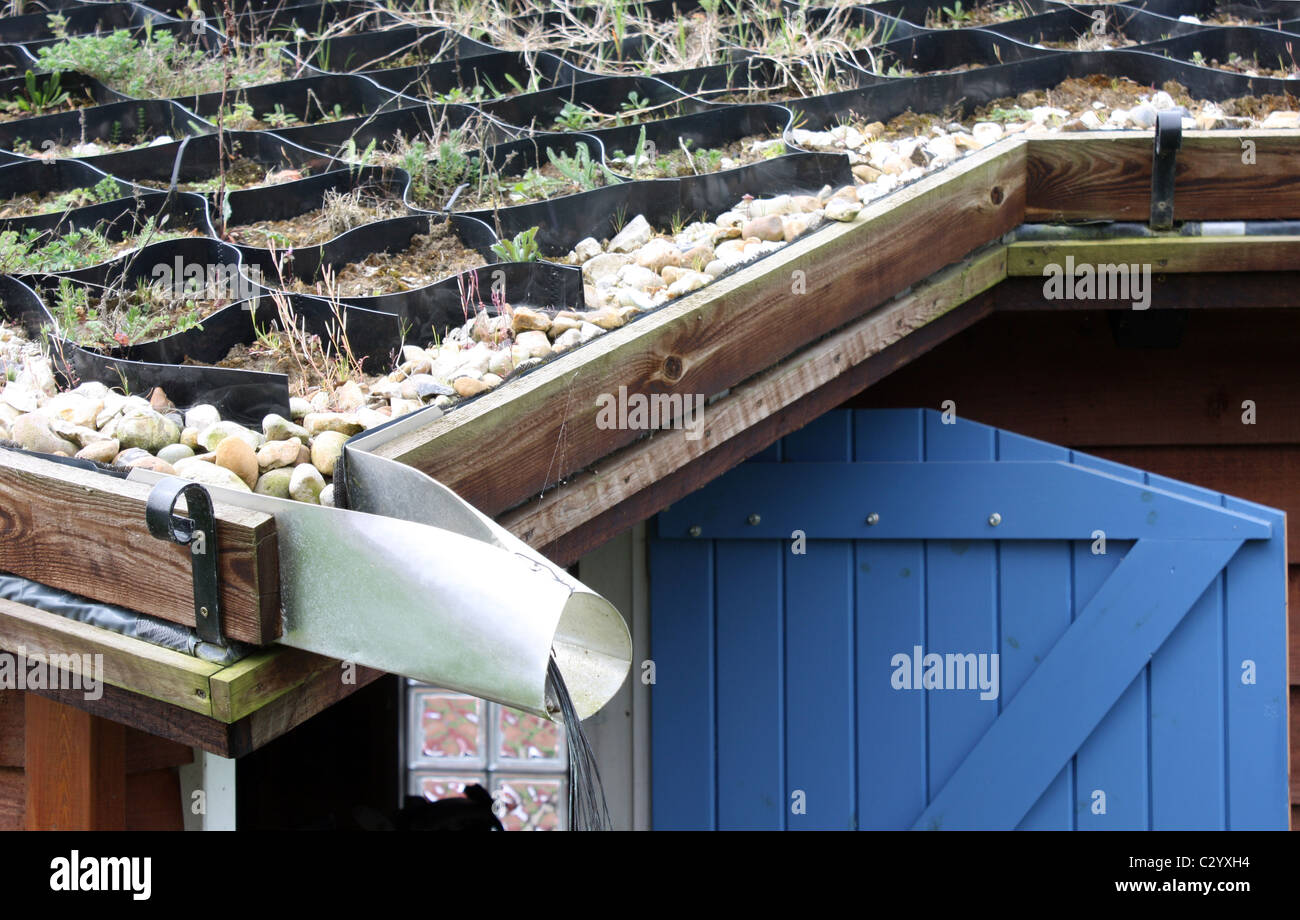 hand made green roof on garage workshop using plastic membrane and stock photo 36263616 alamy. Black Bedroom Furniture Sets. Home Design Ideas