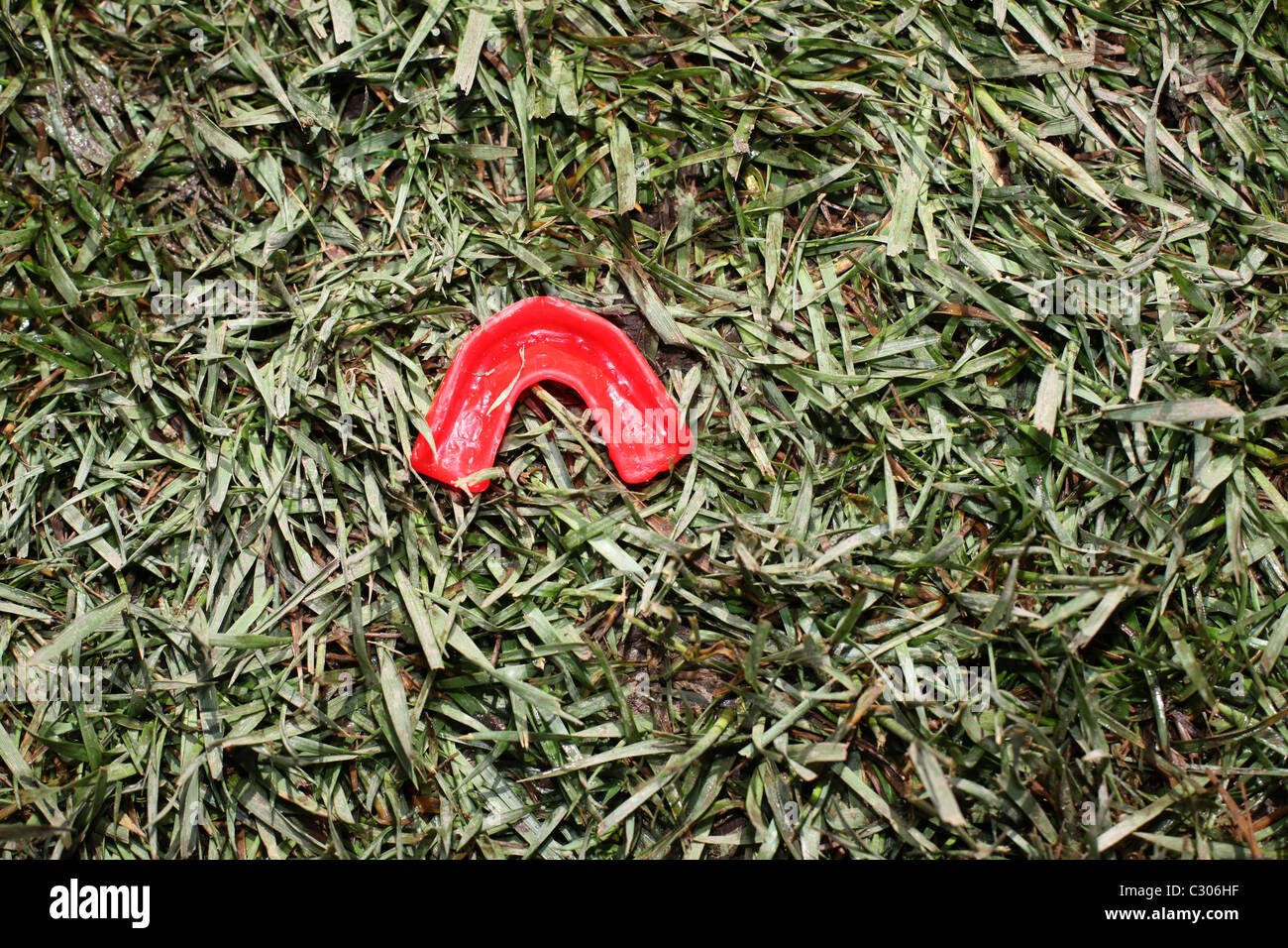 Rugby mouthguard on lawn. - Stock Image