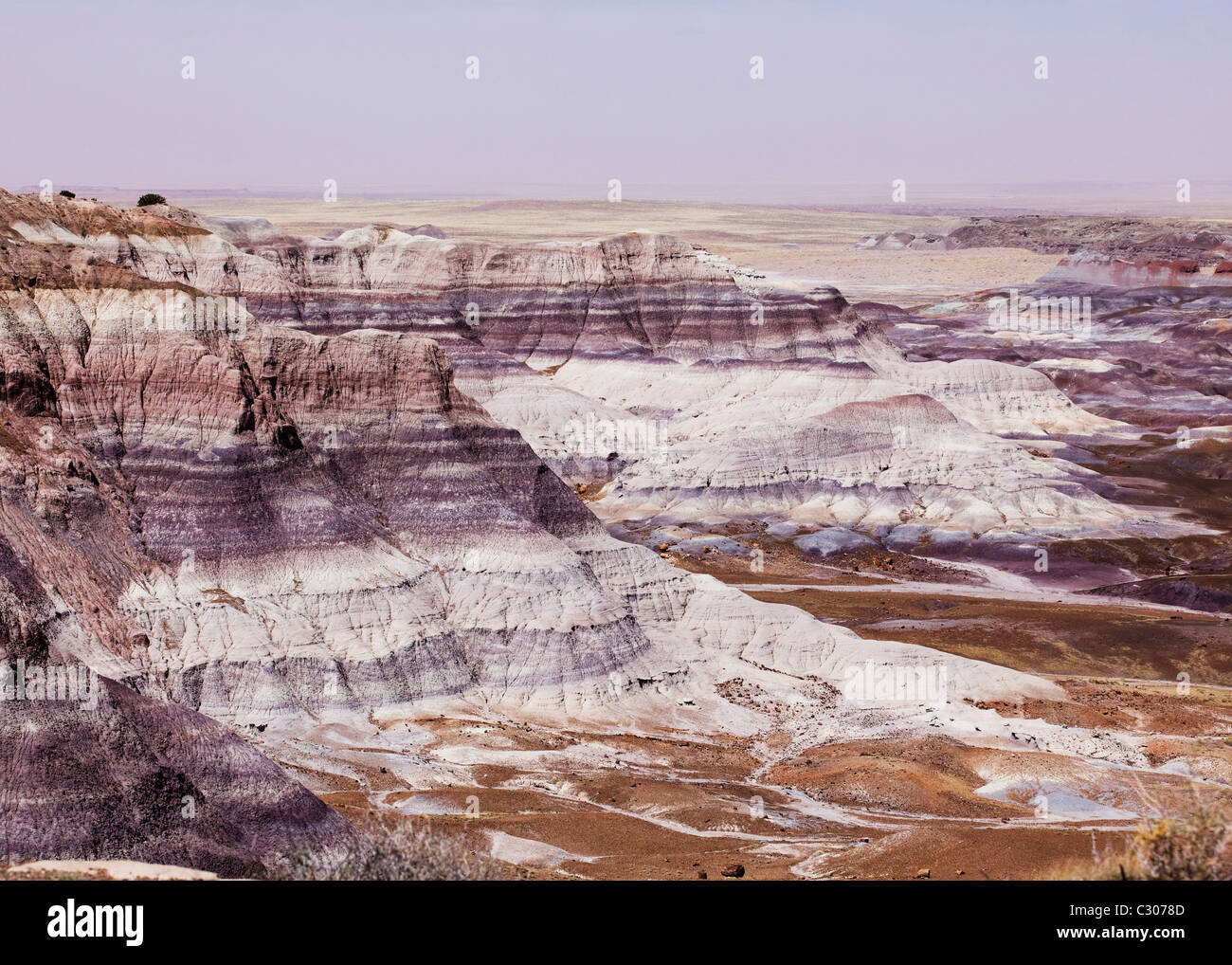Painted Desert: exposed deposits of prehistoric mudstone and sandstone beds - Petrified Forest National Park, Arizona - Stock Image