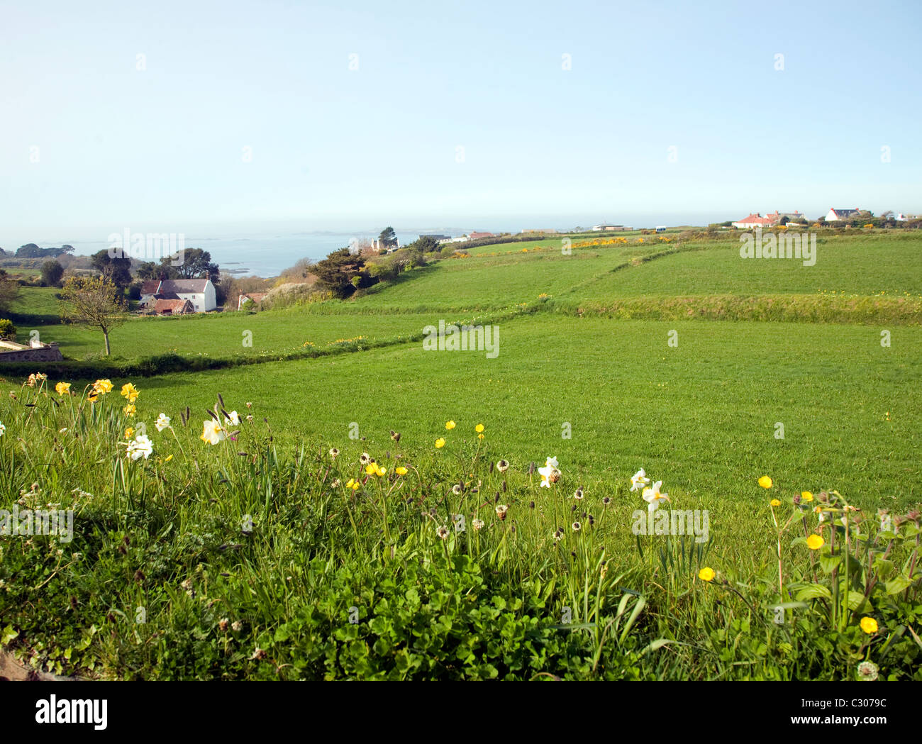 St Pierre du Bois countryside view Guernsey, Channel islands - Stock Image
