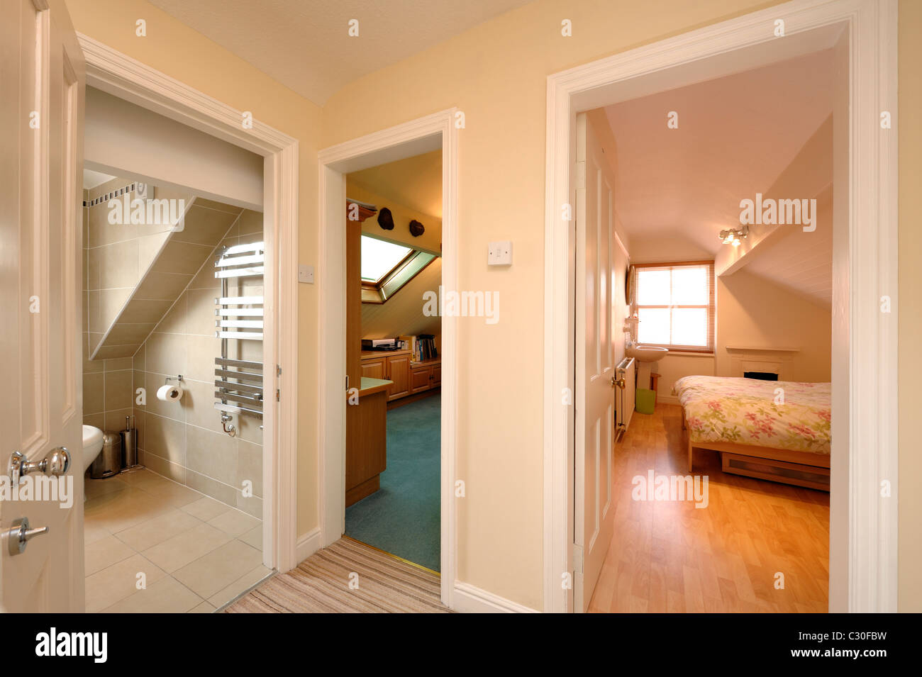 Modern loft conversion - Stock Image