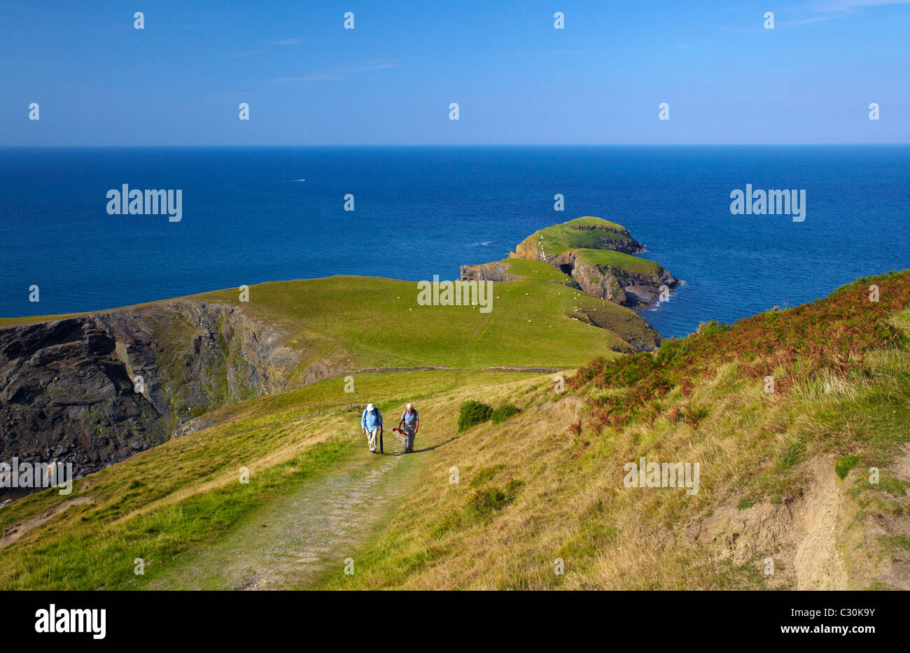 Anglers walking back from Ynys Lochtyn, Llangrannog, West Wales. - Stock Image
