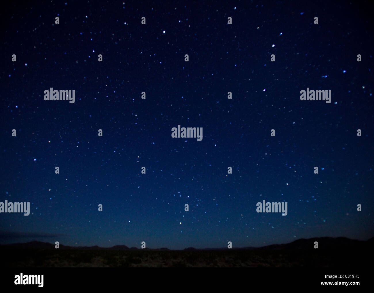 Stars in night sky - Stock Image