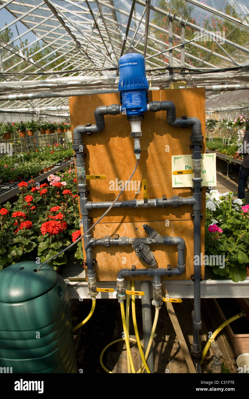 Watering system in nursery greenhouse - Stock Image
