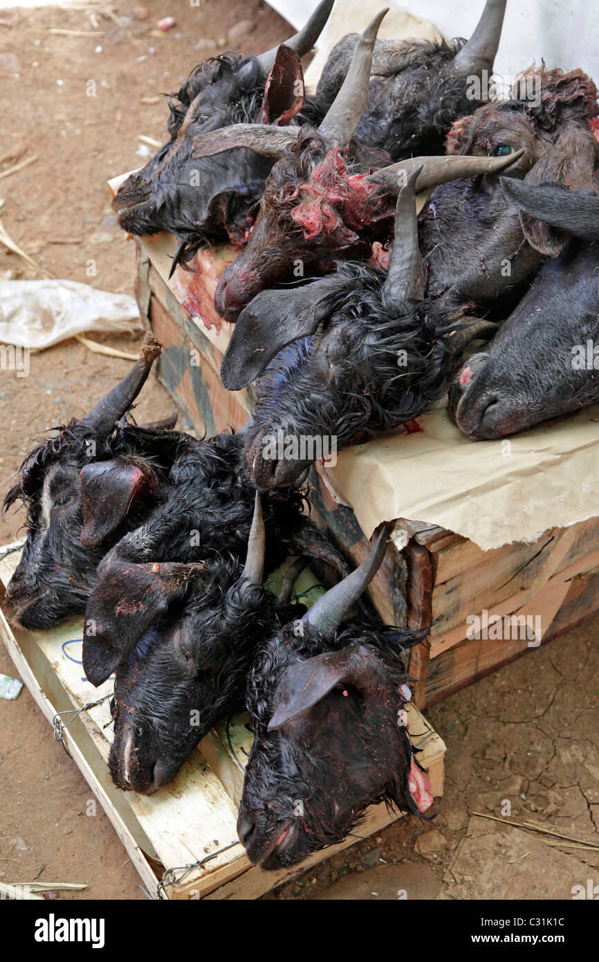 GOATS' HEADS, BUTCHER'S IN THE BAZAAR, BERBER MARKET OF TAHANAOUTE, AL HAOUZ, MOROCCO Stock Photo