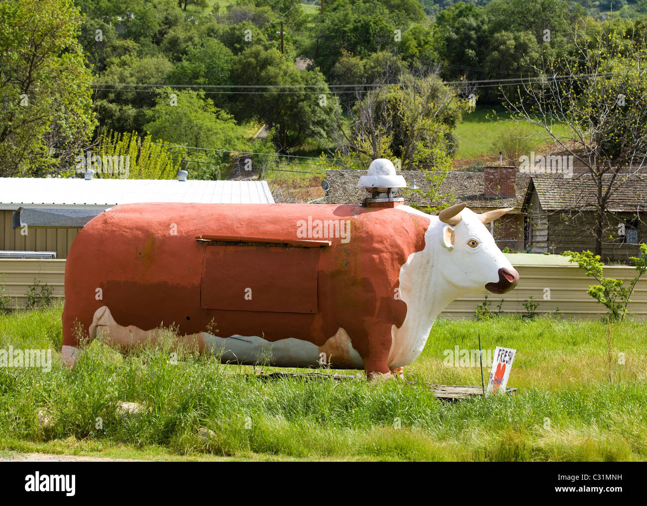 A large BBQ smoker in the shape of a cow sits in rural California - Stock Image